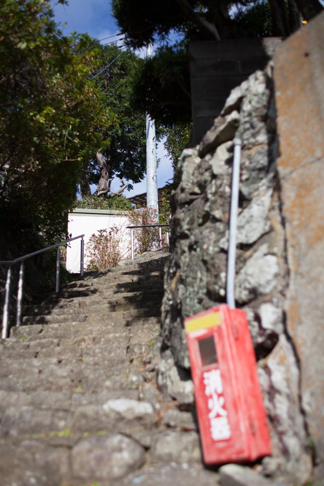 α7II + Kistar 35mm F1.4 絞り優先AE F2 1/4000秒 ISO100 AWB RAW 急斜面の階段を息を切らして登り、ふと行く先を見上げた瞬間……、そんなイメージで撮影した一枚だ。前ボケを積極的に活かすことで、階段の先にある白壁と木がくっきりと浮かび上がる。